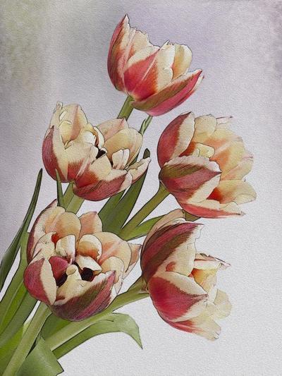 flower-fantasy-7-lmn27828-1-jpg