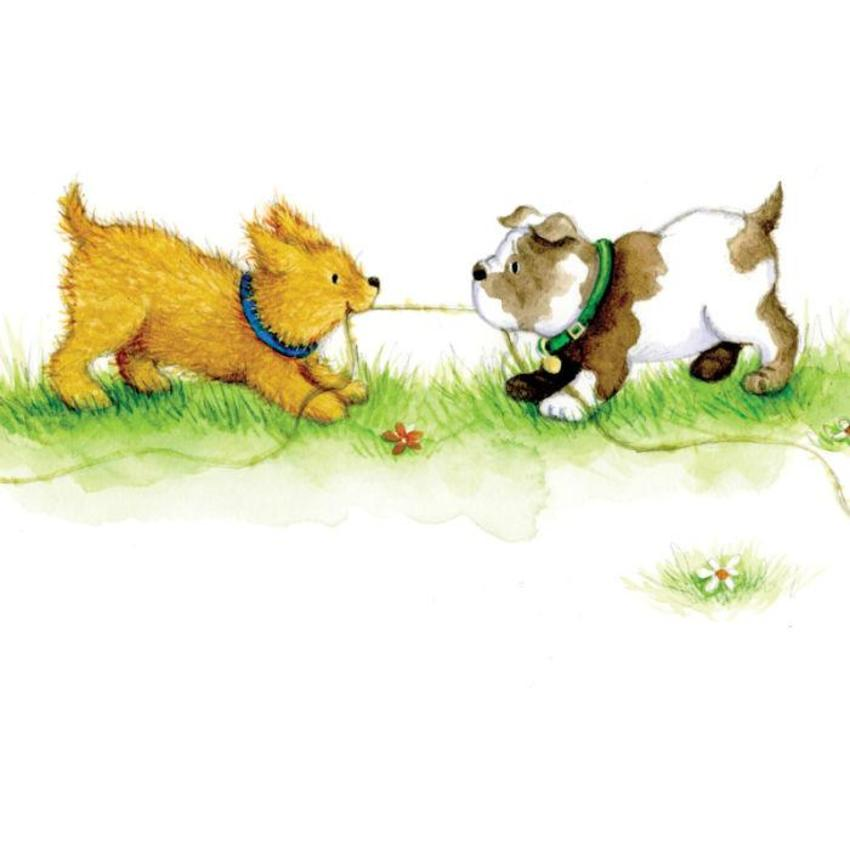 Puppies Playing Tug Of War