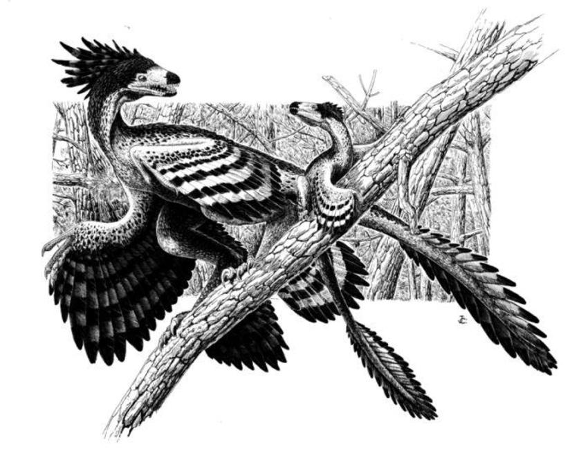 JuanCalledinosaursample01