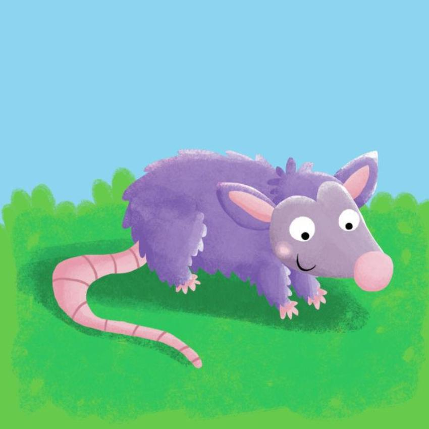 Possum Copy
