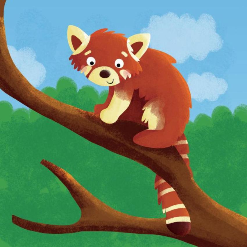 Red Panda Copy