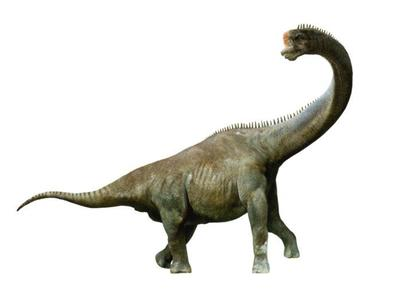 sauroposeidon-aw-jpg