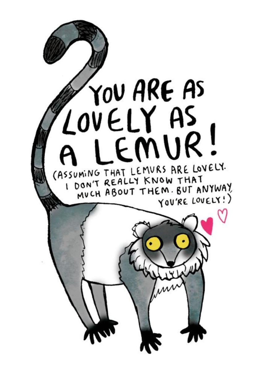 Lovely Lemur.jpg