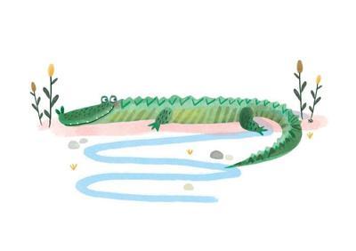 croc-card-nikki-dyson