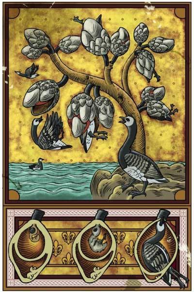 barnaclegoose
