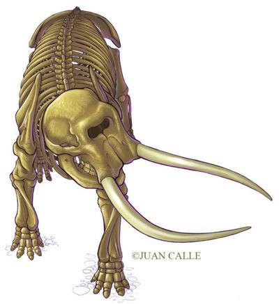 juancalledinosaursample05