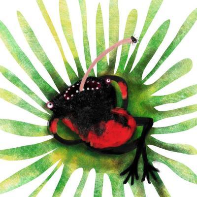 mari-mari-toad