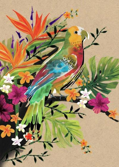 parrot-jpg-1