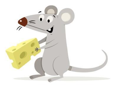 mouse-1-jpg