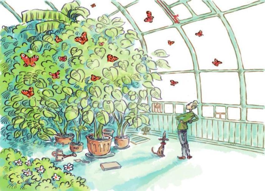Jon Davis Greenhouse Plants Butterflies - Copy