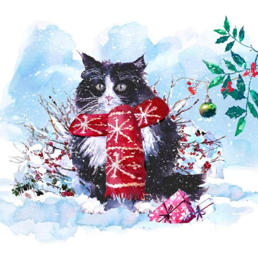 Xmas Black Cat & Scarf