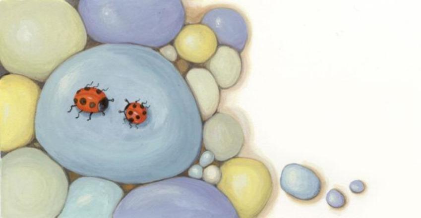 corke ladybird pebbles.jpg