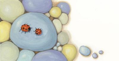 corke-ladybird-pebbles-jpg