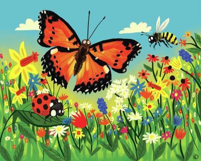 butterflies-jpg-9