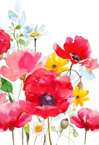 poppys-psd
