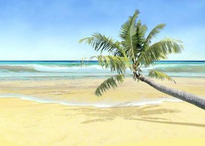 prints-shore-sea-coconut-palm-ii-jpg