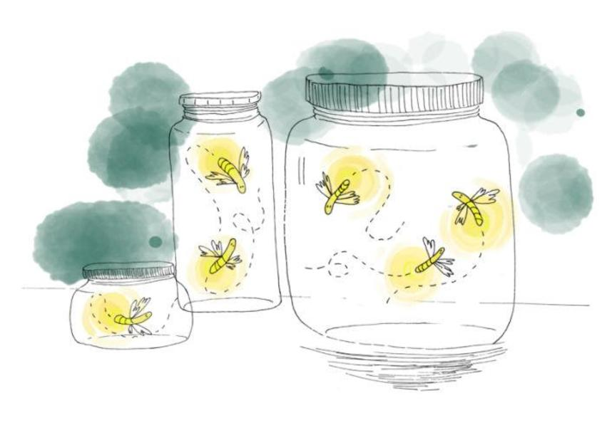 fireflies in glass jars.jpg