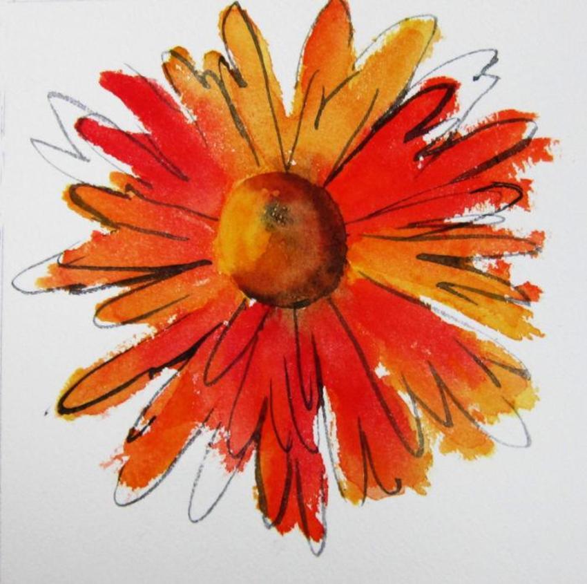 orange daisy.jpg