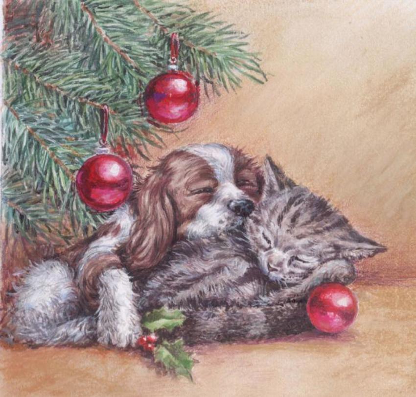 Xmas-Puppy-&-Kitten jpg.jpg