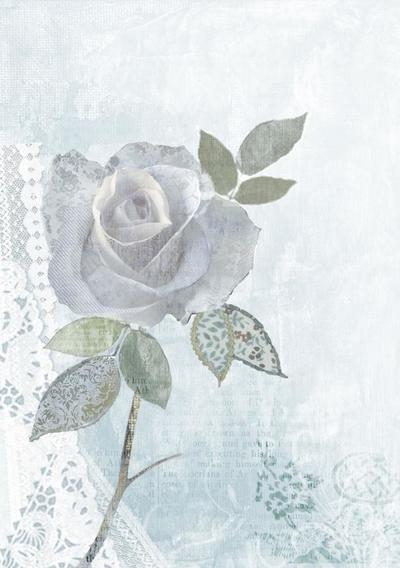 rose-d-jpg
