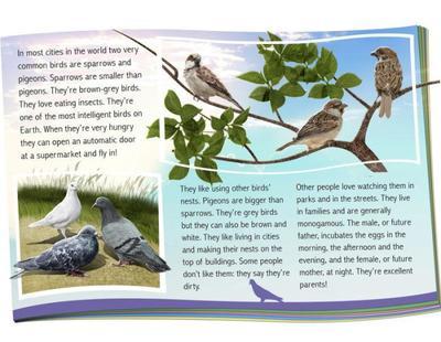garden-birds-jpg-1