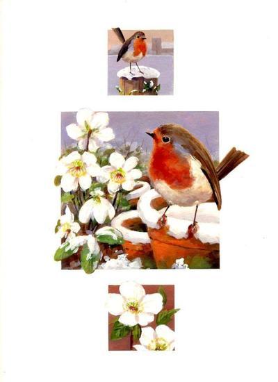 amc-orchard-xmas-10-lo-res-jpg