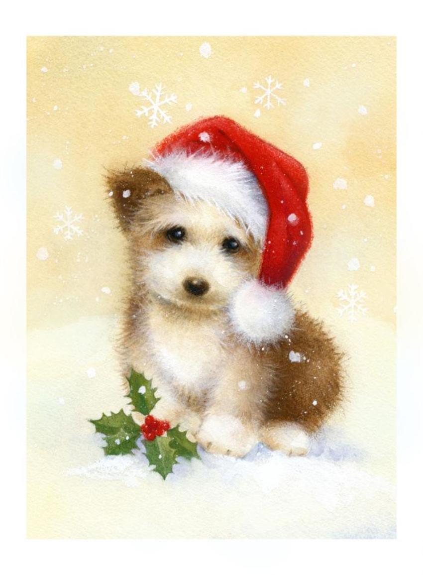 LA - christmas puppy.jpg