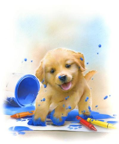muddy-paws-new-cover-aw-jpg