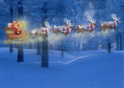 flying-reindeer-jpg