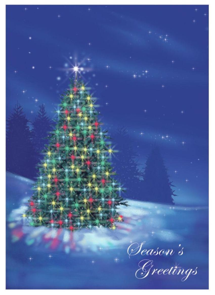 ILLUMINATED TREE CHRISTMAS SNOWY.jpg