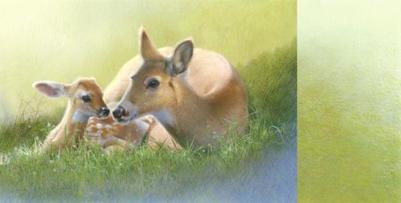 deer-spread-artwork-jpg