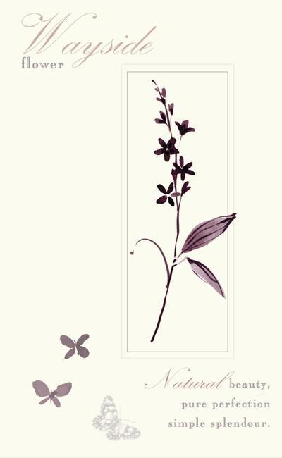 wild-flower-jpg