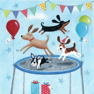 birthday-trampolining-dogs