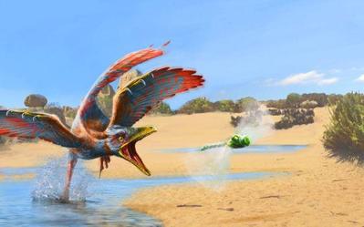 archaeopteryx-1