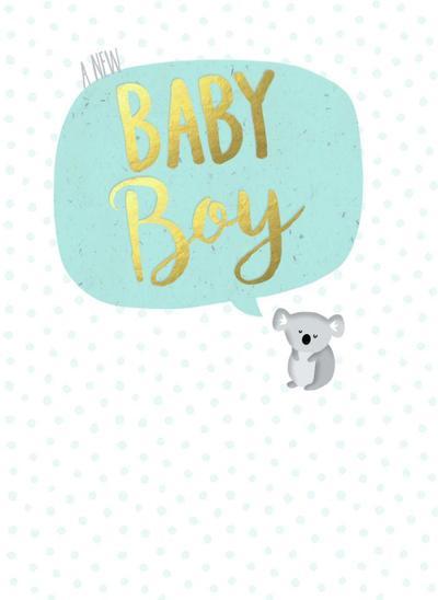baby-boy-koala-1