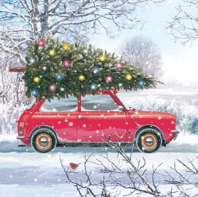 car-and-tree-vic-mclindon