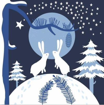 bunnies-rabbits-night-winter