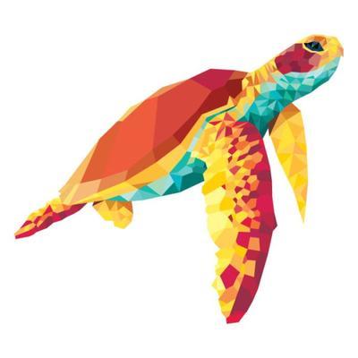 geo-turtle