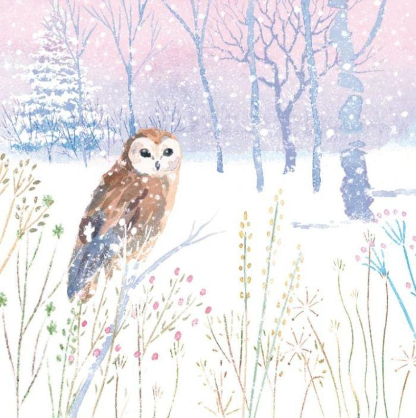 Winter-forest-snow-countryside-animal-woodland-owl-vic-mclindon
