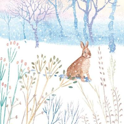 winter-forest-snow-countryside-animal-woodland-rabbit-hare-bunny-vic-mclindon