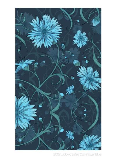ludovicsalle-cornflower-blue
