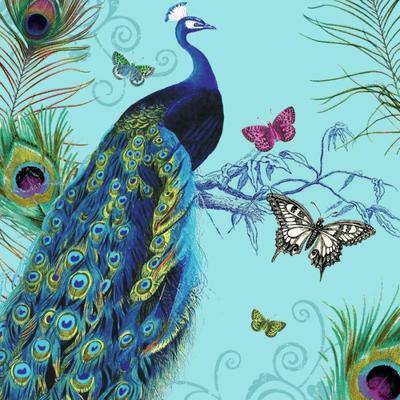 peacock-32