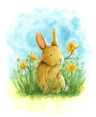 estelle-corke-easter-bunnie-daffodil