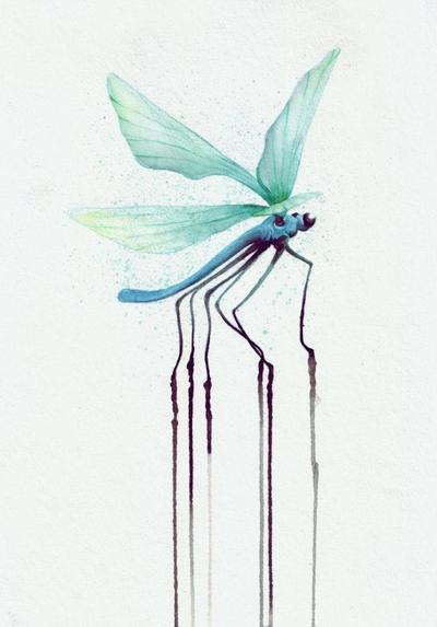 dragonfly-3