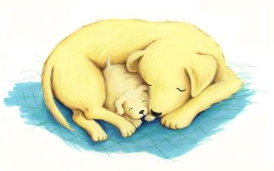 estelle-corke-puppy-jpg