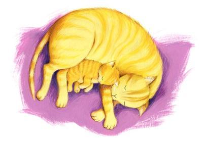 estelle-corke-kitten-jpg