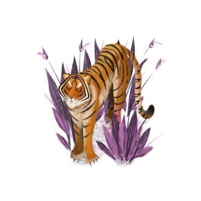 tiger-16