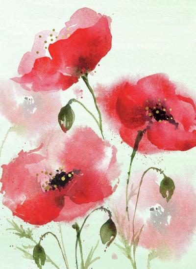 00076a-dib-poppies