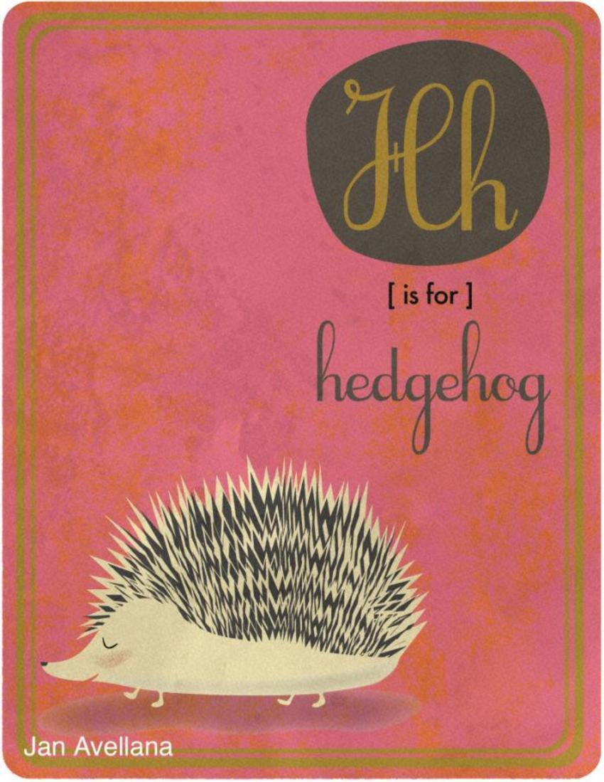 Alphabet H Is For Hedgehog