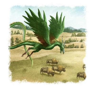 dragons-007